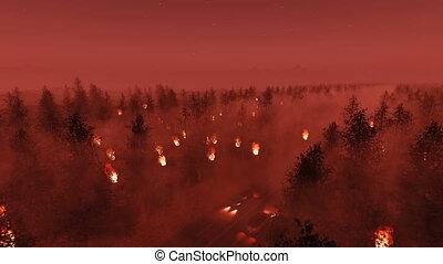 forêt, trafic, brûler, voitures, accident