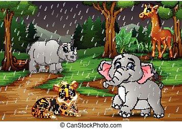 forêt tropicale humide, animal, sous, sauvage, dessin animé