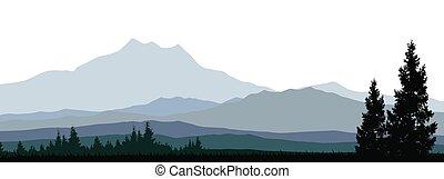 forêts conifères, silhouette