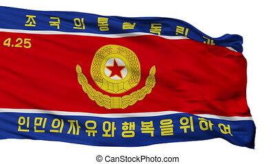 force, armée, seamless, isolé, drapeau, peuples, coréen,...