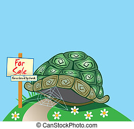Foreclosed Turtle home - A light hearted expression...