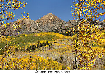 Foreground aspens and mountains along Keblar Pass