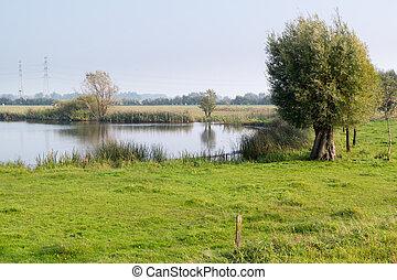 Forelands of River IJssel, Netherlands - Pool and grassland...