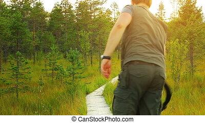 forest., турист, гулять пешком