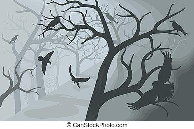 forest., からす, 黒, ひどい, 霧が濃い