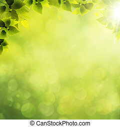 forest., 夏, 抽象的, 自然, 背景