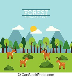 forest and animals wildlife natural