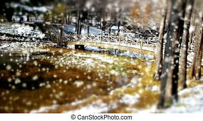 Forest and bridge reflection