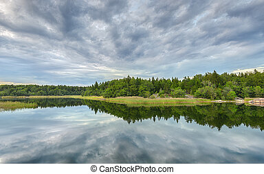 Forest and cloud reflections in lake