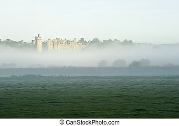 Forest and field scene with mist and fog with ancient castle...