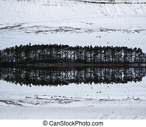 Forest and mountain Winter landscape reflected in calm lake