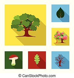Forest and nature flat icons in set collection for design....