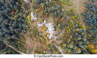 Forest and rocks in autumn aerial drone view
