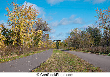 Forest and Trails of Black Dog Greenway