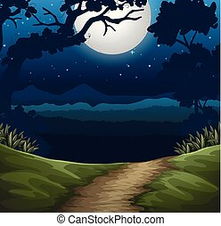 forest at night scene