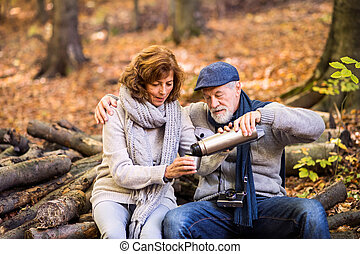 forest., automne, couple, personne agee, promenade