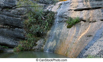 forest., automne, entiers, chute eau, hd.