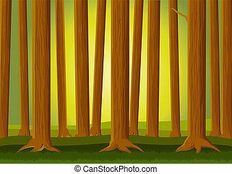 Forest background - Vector illustration of forest background