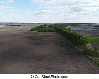 Forest belt along a plowed field, aerial view. Cloudy sky over farm fields. Beautiful landscape.