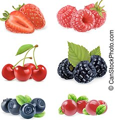 Forest berry. Sweet fruit. Realistic illustration. 3d vector icon set