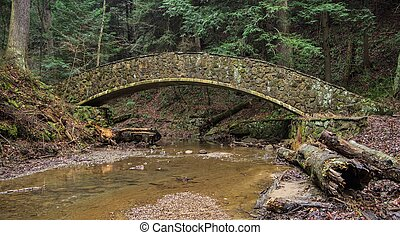 Forest Bridge - Stone footbridge over a remote stream in...