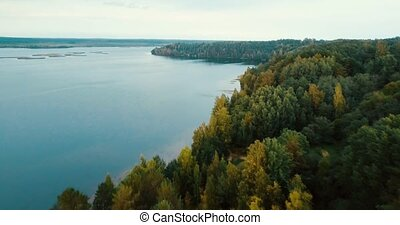 Forest by the lake and coniferous trees in the north. Aerial...