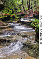 Forest Cascade - Water cascades down a sandstone stream bed...