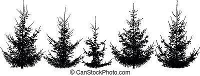 Forest Christmas trees, set. Isolated vector silhouette