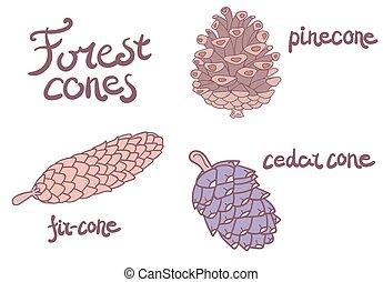 Forest conifer cones set