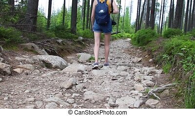 forest., do góry, lifestyle., turyści, podróżnicy, foot., nogi, czynny, pieszy, zamknięcie