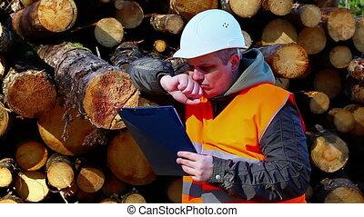 Forest employee with folder near logs