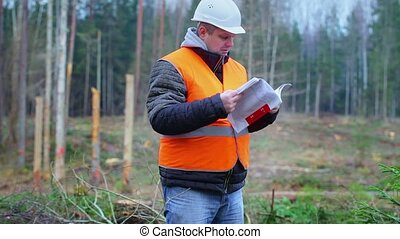 Forest engineer checking documents