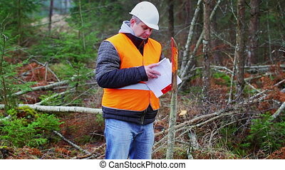 Forest engineer flipping documents