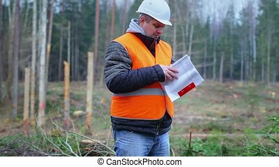 Forest engineer reading documents