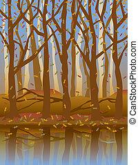 forest-fall, saisons, quatre