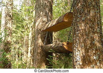 Forest feeder for animals and birds. Nature. The photo