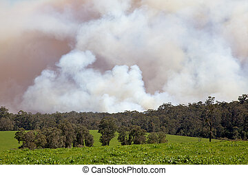 Forest Fire - A forest fire near the town of Pemberton in...