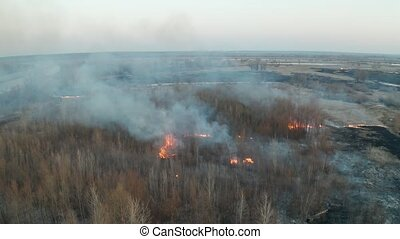 Forest fire aerial - Forest and grassland fire, large flames...