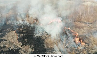 Forest fire aerial - Forest fire, large flames and smoke ...
