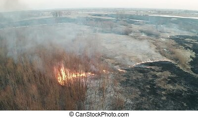 Forest fire aerial - Spring grassland and forest fire, large...