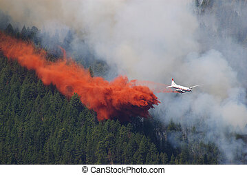 Fighting a forest fire in the mountains using an airplane