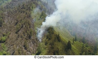 forest fire in the mountains - aerial view forest fire smoke...