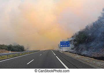 Forest fire on the road near Verin Galicia, Spain