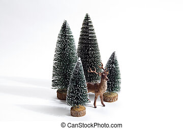 forest firs and reindeer