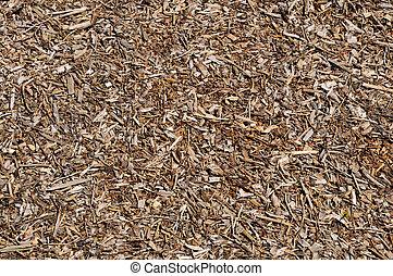 Part of forest floor texture