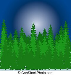 Forest from a Christmas tree, at night in winter, cartoon on a white background,