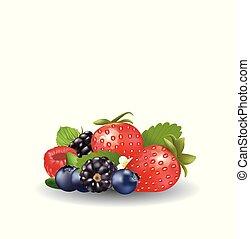 Forest fruits set