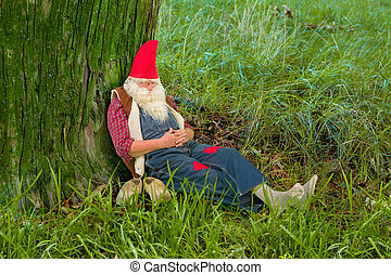 Forest gnome sleeping