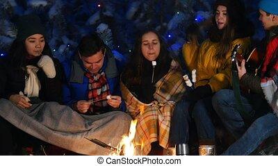 forest., groupe, hiver, séance, dépenser, ensemble, guitare, temps, manger, amis, jouer, feu, marshmallow.