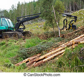 Forest harvester - Heavy forestry vehicle harvester employed...